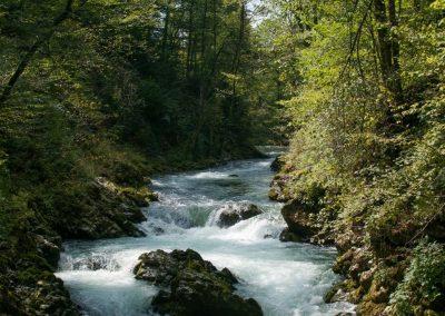 Méditation guidée «le bord de la rivière»